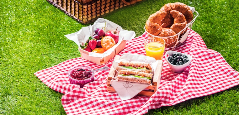 Como preparar un picnic familiar