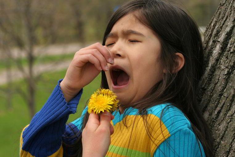 alergias comunes
