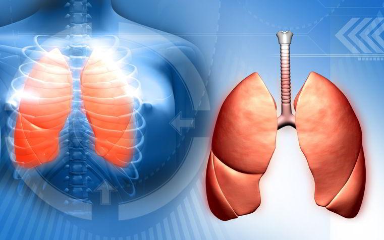 Leer sobre remedios caseros hipertensión