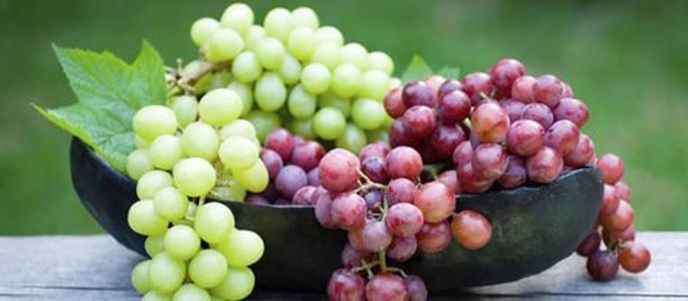 propiedades y beneficios de la uva para la piel