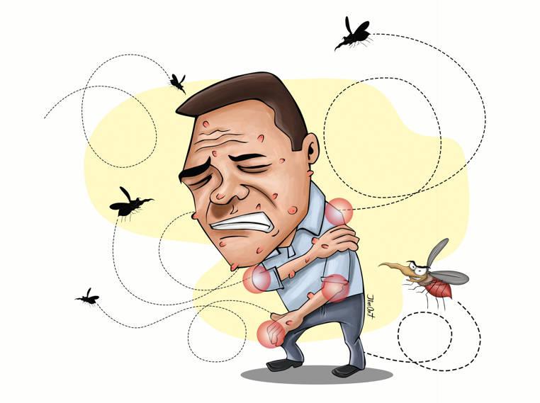 zika sintomas