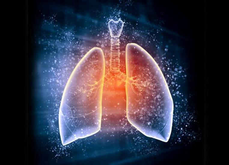 desintoxicar los pulmones