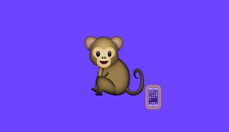 aplicacion monkey