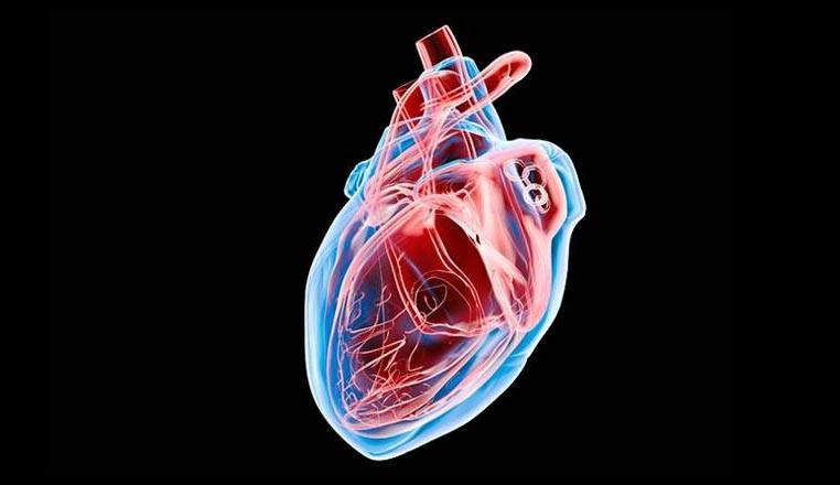 inteligencia artificial podría predecir ataques cardiacos